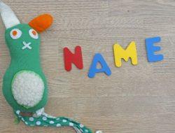 5 Nama Anak yang Dilarang Di Seluruh Penjuru Dunia